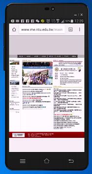 傳統網站3-手機顯示(點圖可預覽)